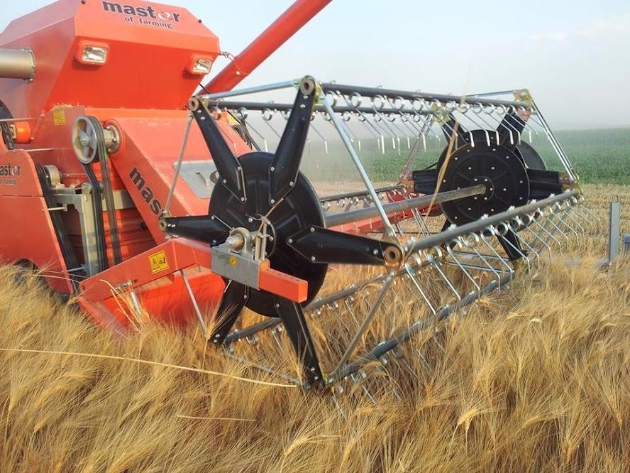 Harman makinesiyle buğday hasadı