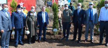 Adana'da 251 şehidin anısına 251 fidan dikildi