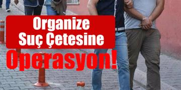 Organize Suç Çetesine Operasyon!
