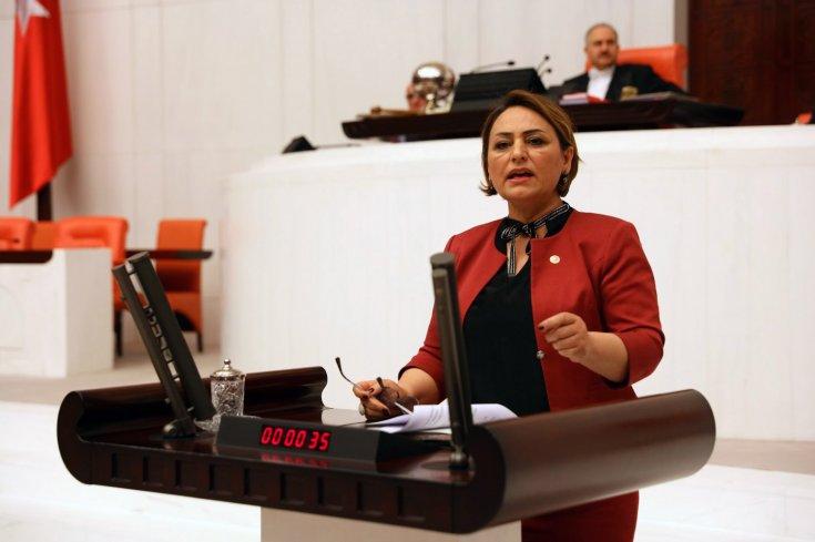 """CHP'li Şevkin: """"Devlet, üniversiteli işçilerden istifade edemiyor"""""""