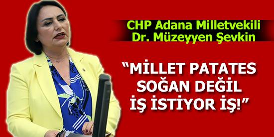 """CHP'li Şevkin: """"Millet Patates Soğan Değil İş İstiyor İş!"""""""