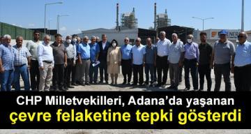 CHP Milletvekilleri, Adana'da yaşanan çevre felaketine tepki gösterdi