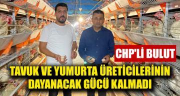 CHP'li Bulut: Tavuk ve yumurta üreticilerinin dayanacak gücü kalmadı